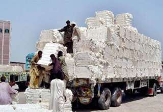 Cotton being unloaded