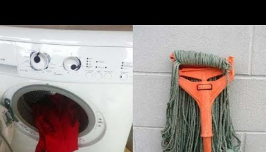 Hilariously Misleading Things That Will Make You Look Twice