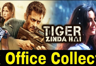 Tiger Zinda Hai Box Office